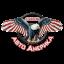 Проект Авто Америка